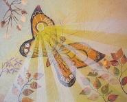 bob-craig-sun_buttrfly